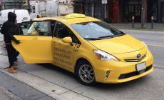Taxi Lębork telefon